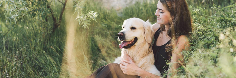 Pet Care Insurance Massachusetts