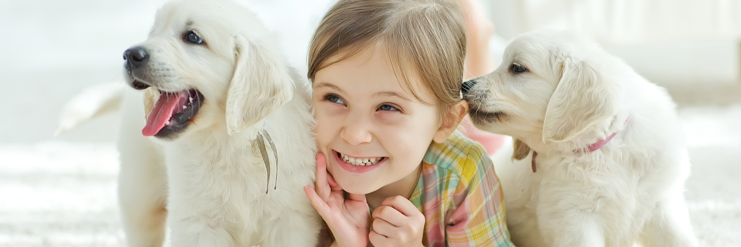 Pet Insurance Massachusetts